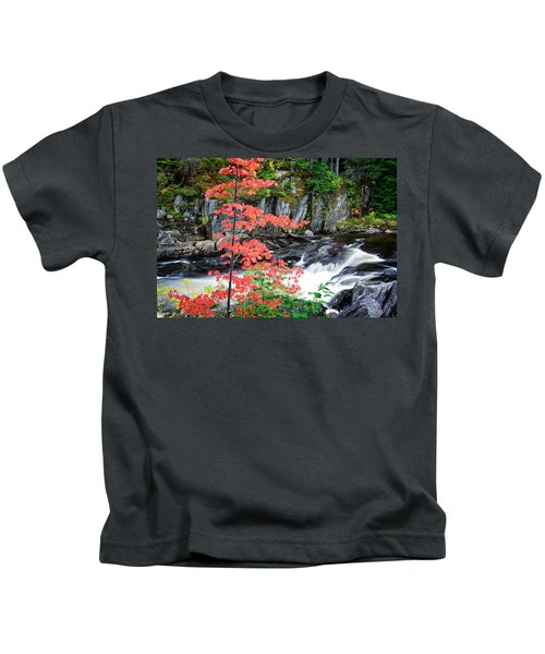 Red Maple Gulf Hagas Me. Kids T-Shirt