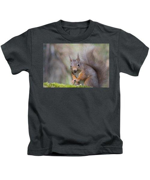 Red Squirrel - Scottish Highlands #26 Kids T-Shirt