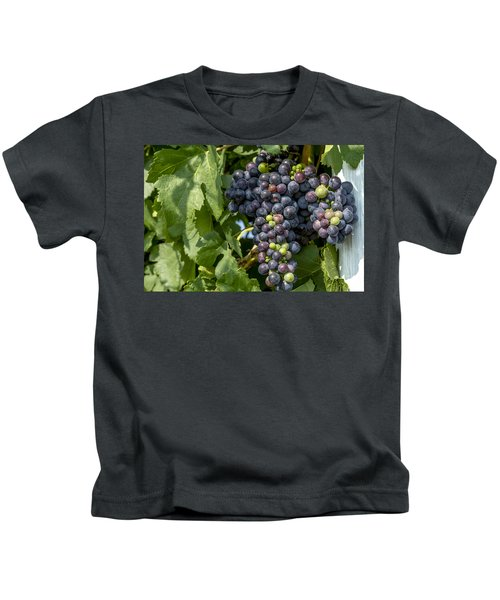 Red Wine Grapes On The Vine Kids T-Shirt