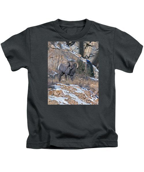 Rocky Mountain Big Horn Ram  Kids T-Shirt