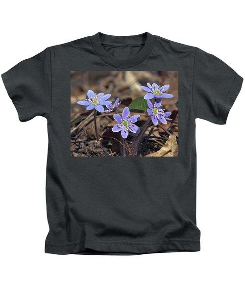 Round-lobed Hepatica Dspf116 Kids T-Shirt
