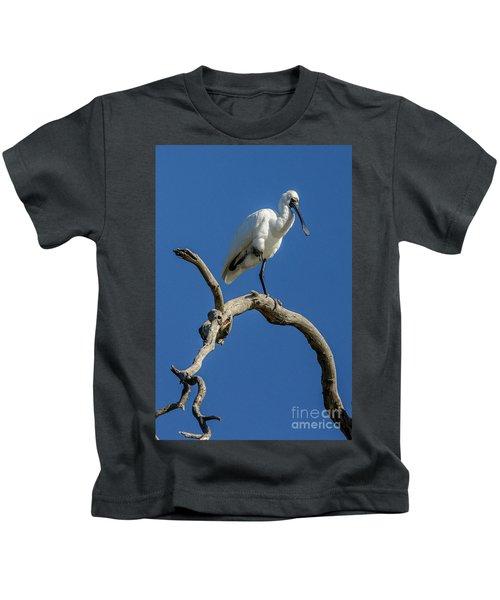 Royal Spoonbill 01 Kids T-Shirt