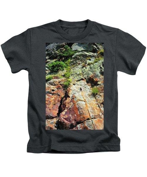 Rusty Rock Face Kids T-Shirt