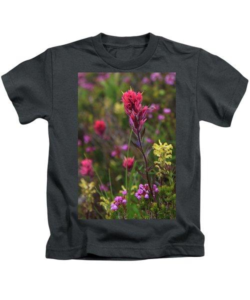 Scarlet Paintbrush Kids T-Shirt