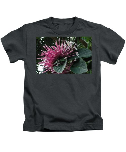 Kids T-Shirt featuring the photograph Selby Stars 1 by Susan Molnar