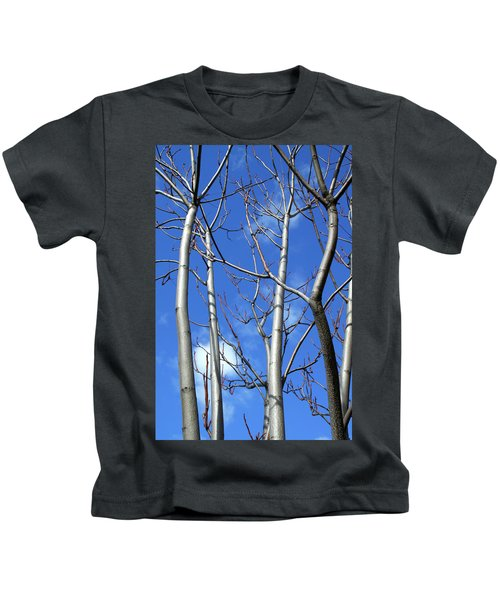Silver Smooth Kids T-Shirt