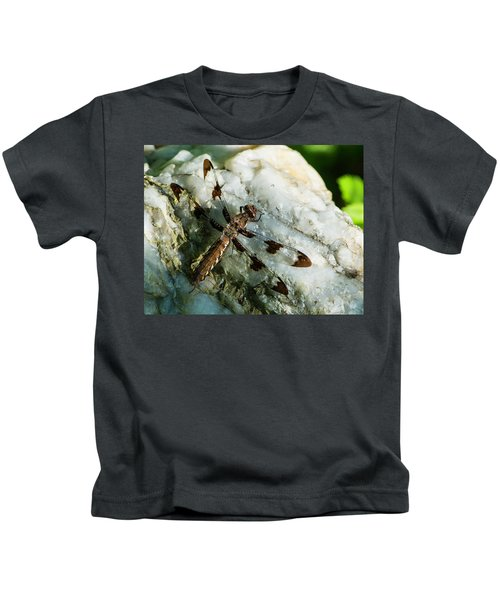 Six Spotted Dragonfly Kids T-Shirt