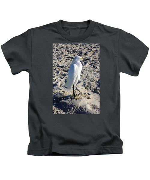 Snowy Egret At Naples, Fl Beach Kids T-Shirt