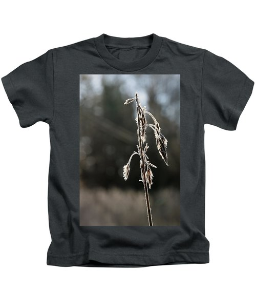 Straw In Backlight Kids T-Shirt