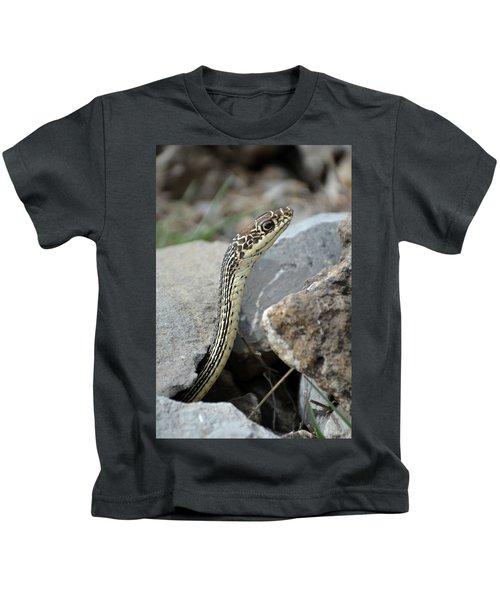 Striped Whipsnake, Masticophis Taeniatus Kids T-Shirt