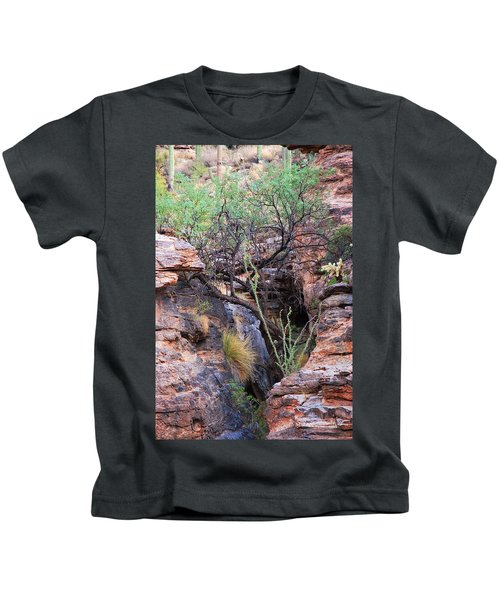 The Hole - Mount Lemmon Kids T-Shirt