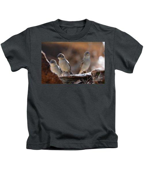 The Three Musketeers Kids T-Shirt