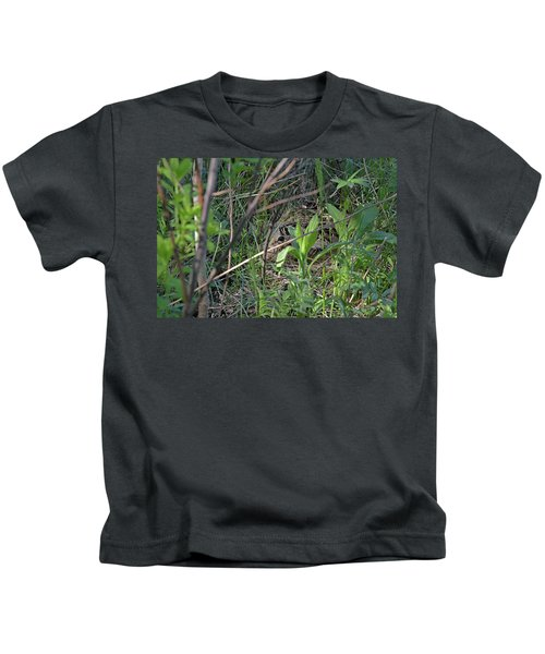 Those Velvet Eyes That Betray Its Camouflage Of The Nesting Woodcock Kids T-Shirt
