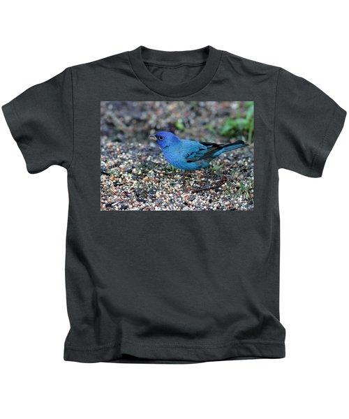 Tiny Indigo Bunting Kids T-Shirt