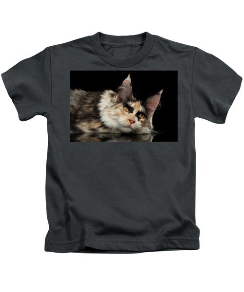 Tired Maine Coon Cat Lie On Black Background Kids T-Shirt