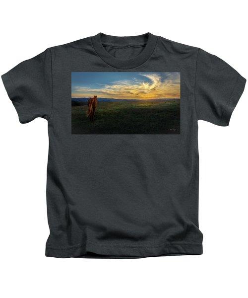 Under A Bright Evening Sky Kids T-Shirt