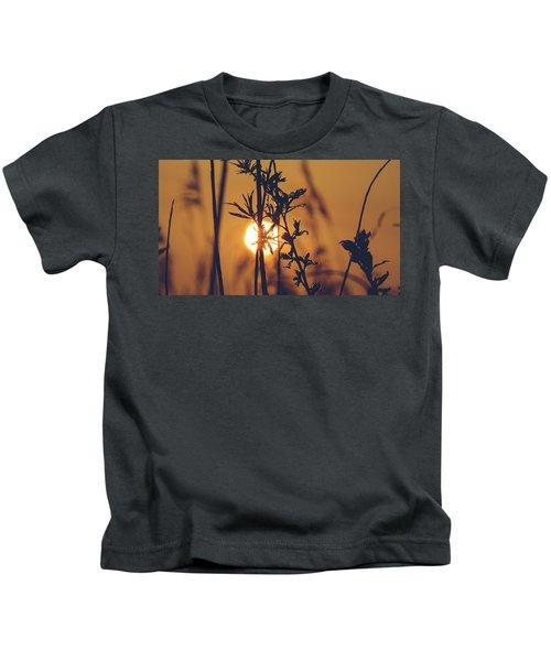 View Of Sun Setting Behind Long Grass D Kids T-Shirt