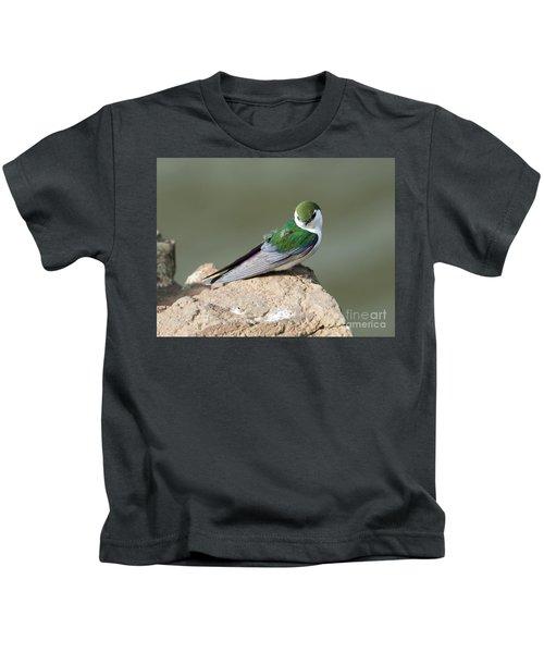 Violet-green Swallow Kids T-Shirt