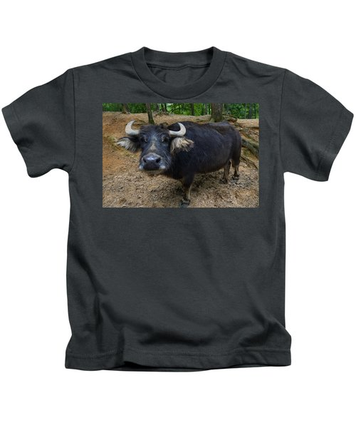 Water Buffalo On Dry Land Kids T-Shirt