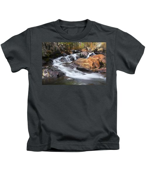 Waterfall In Lee Vining Canyon 2 Kids T-Shirt
