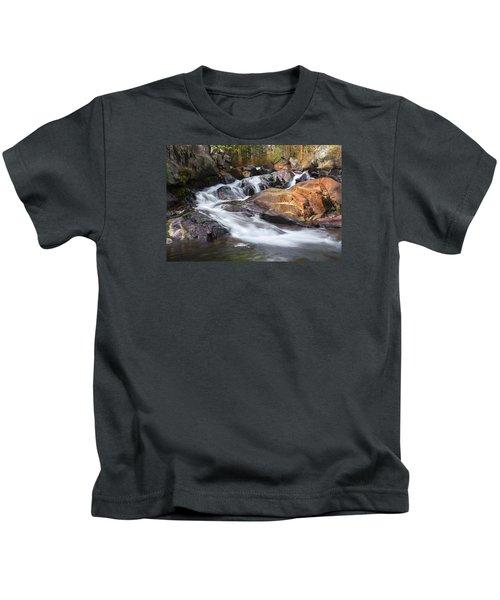 Waterfall In Lee Vining Canyon 2 Kids T-Shirt