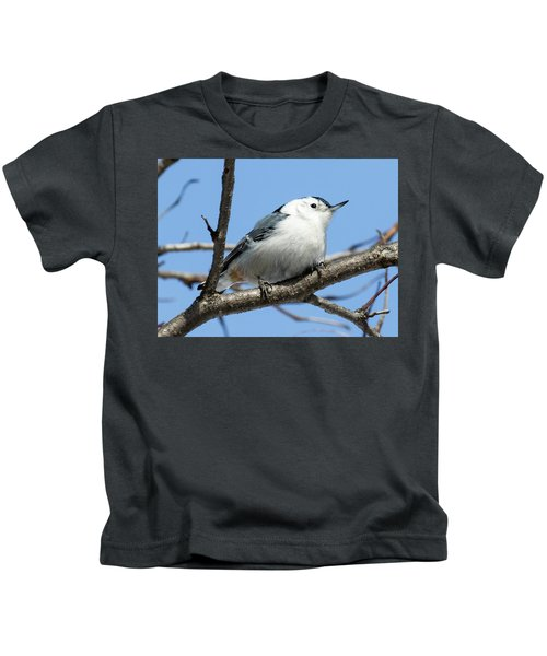White-breasted Nuthatch Perched Kids T-Shirt