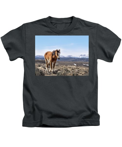 Wild Mustang Filly Of Sand Wash Basin Kids T-Shirt