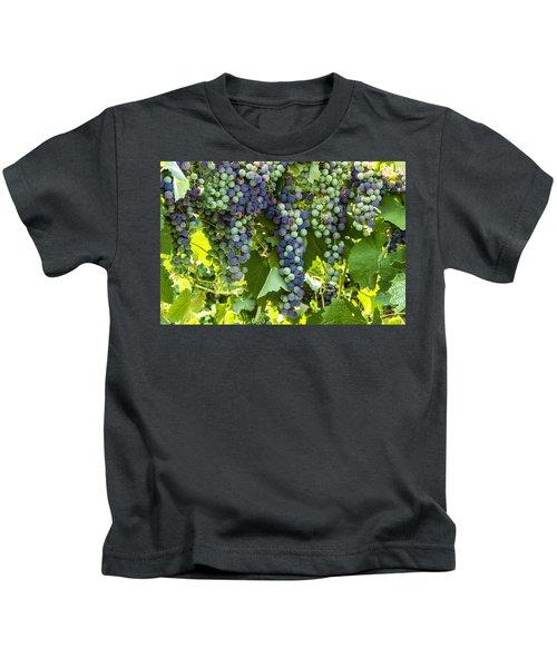 Wine Grape Colors Kids T-Shirt