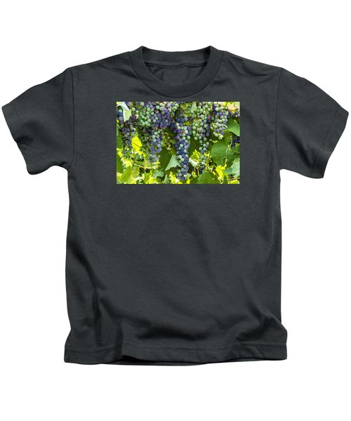 Wine Grape Colors Kids T-Shirt