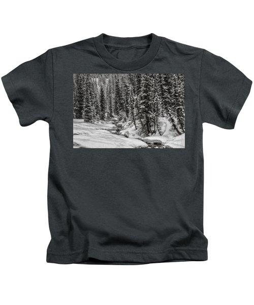 Winter Alpine Creek II Kids T-Shirt