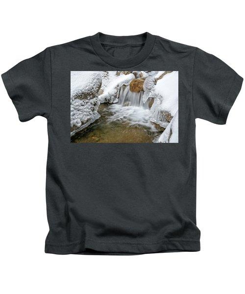 Winter Cascade Nh Kids T-Shirt