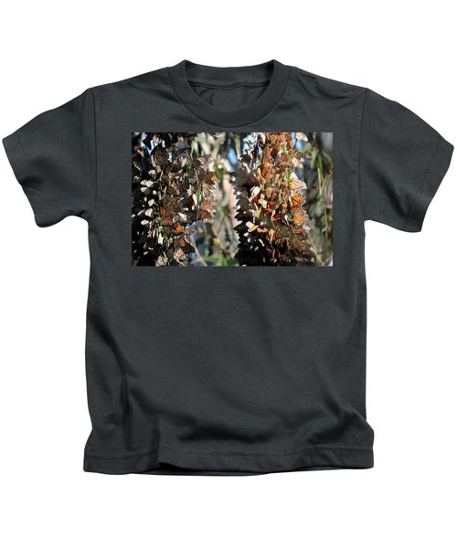 Wintering In Santa Cruz Kids T-Shirt