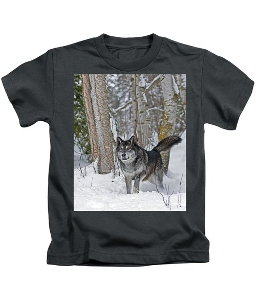 Wolf In Trees Kids T-Shirt
