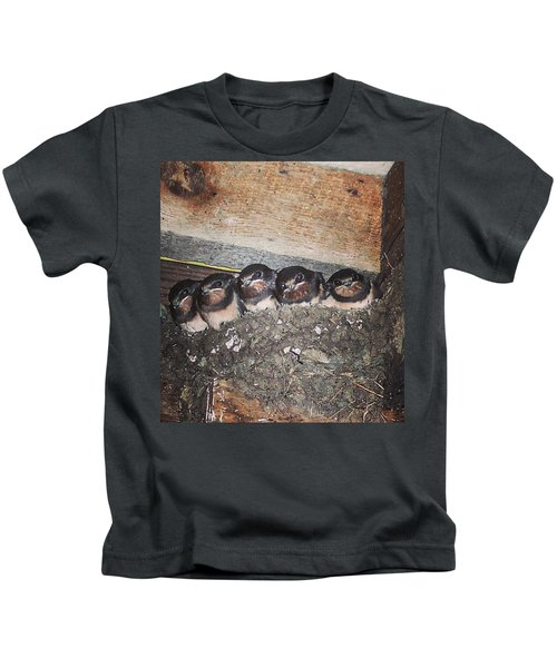 Young Swallows, Lancashire, England, Uk Kids T-Shirt