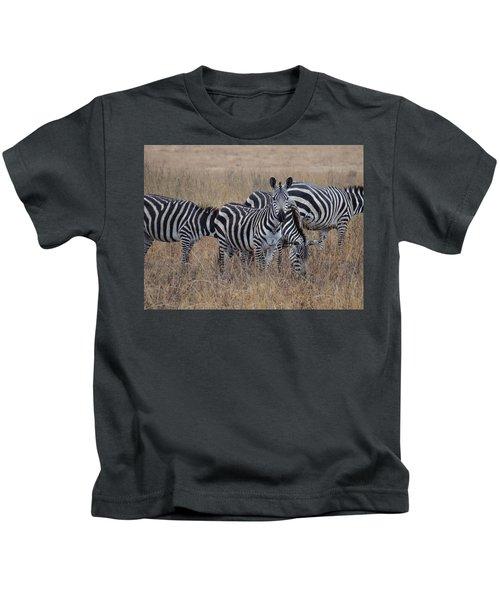 Zebras Walking In The Grass 2 Kids T-Shirt by Exploramum Exploramum
