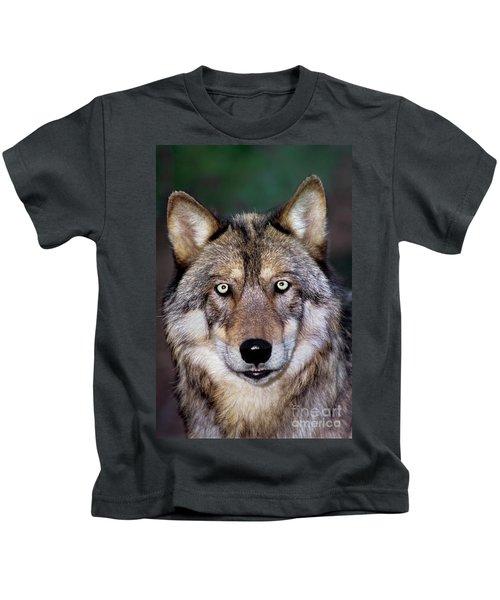 Gray Wolf Portrait Endangered Species Wildlife Rescue Kids T-Shirt