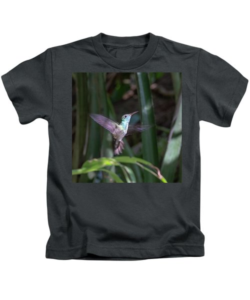 Versicolored Emerald Hummingbird Hovers Kids T-Shirt