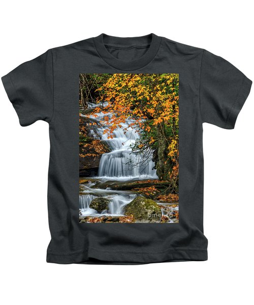Waterfall And Fall Color Kids T-Shirt