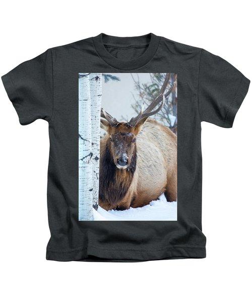 4 Wire Winter  Kids T-Shirt