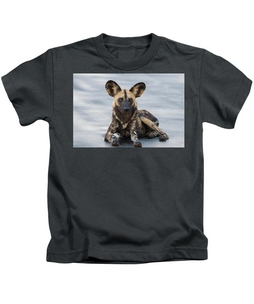 African Wild Dog Resting On A Road Kids T-Shirt