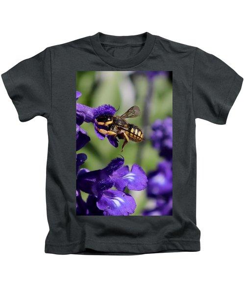 Carder Bee On Salvia Kids T-Shirt