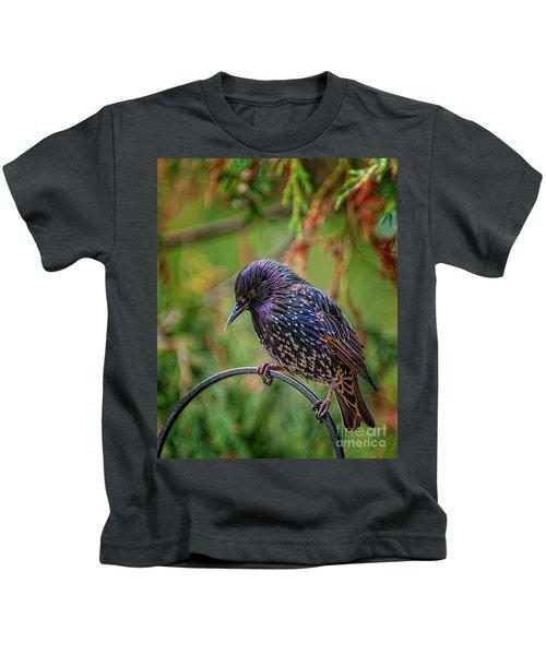European Starling Kids T-Shirt