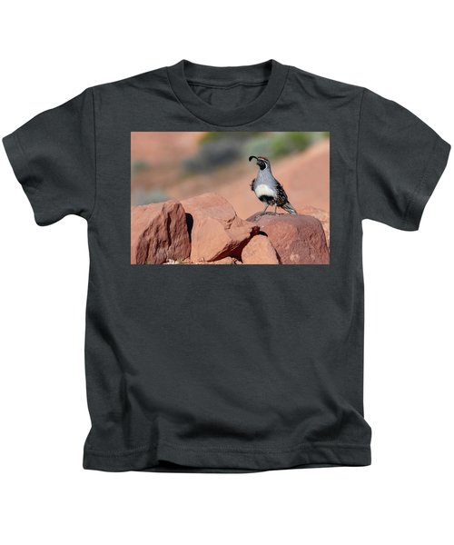 Gambels Quail One Kids T-Shirt
