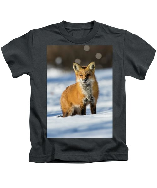 Mr Sly In Winter Kids T-Shirt