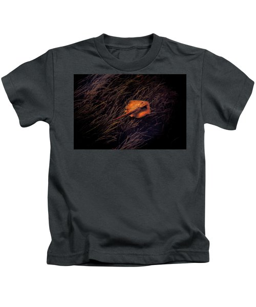 Ray In The Grass Flats Kids T-Shirt