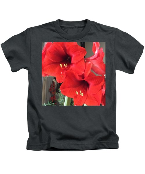 Red Amaryllis Kids T-Shirt