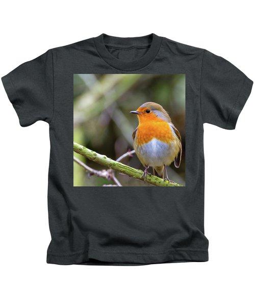 Robin. On Guard Kids T-Shirt