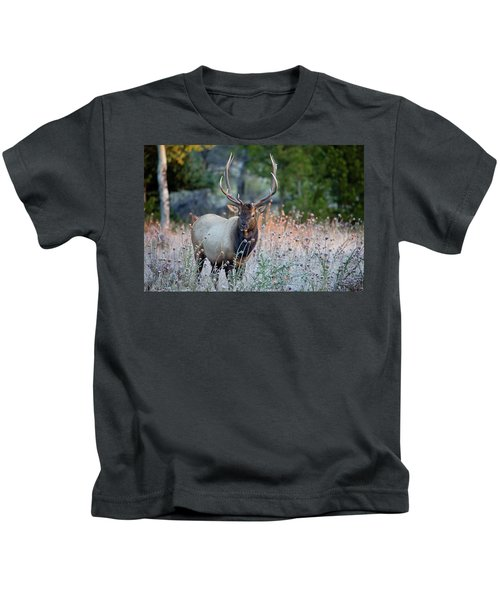 Rocky Mountain Wildlife Bull Elk Sunrise Kids T-Shirt