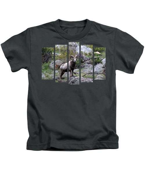 Set 49 Kids T-Shirt