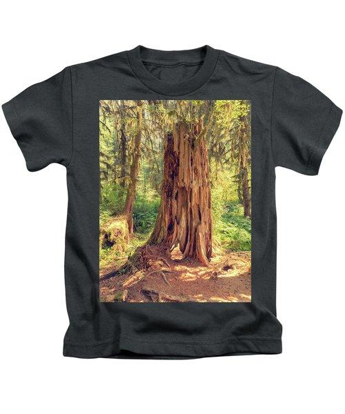 Stump In The Rainforest Kids T-Shirt
